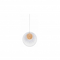 Oyster suspension White
